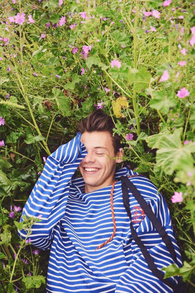 harry-styles-by-ryan-mcginley_1